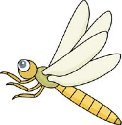 Dragonfly clipart insect