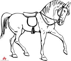 Saddle clipart drawing