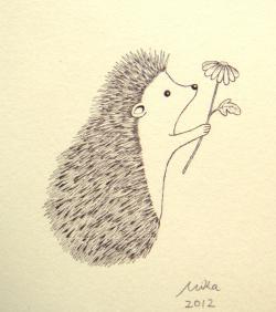 Drawn hedgehog cute