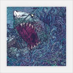 Drawn album cover shark