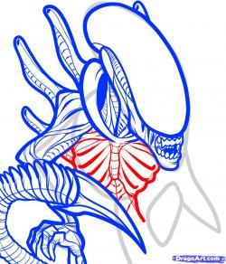 Drawn predator drawing