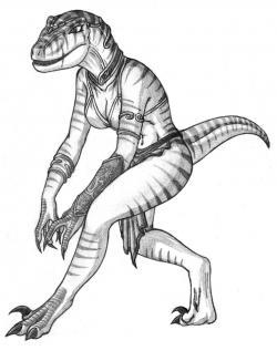 Drawn velociraptor female