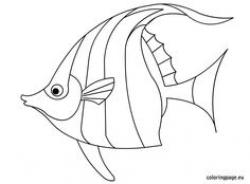 Angelfish clipart black and white