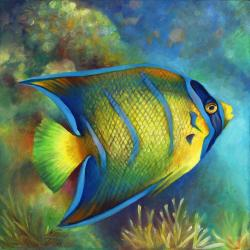 Drawn sea turtle queen angelfish