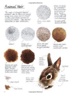 Drawn fur