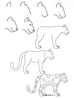 Drawn jaguar easy
