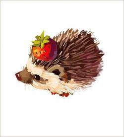 Drawn hedgehog adorable