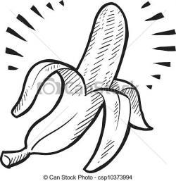 Drawn banana sketched