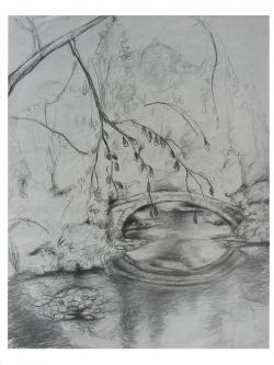 Drawn pond pencil drawing