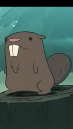 Drawn beaver gravity falls