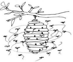 Drawn bees beehive