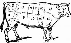 Drawn beef chicken meat