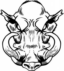 Boar clipart boar head
