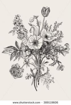 Drawn wildflower spring flower