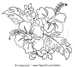 Drawn hibiscus black and white