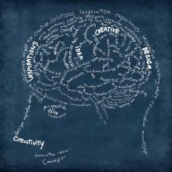 Drawn brains chalkboard