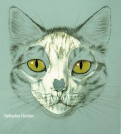 Drawn feline badass