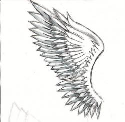 Drawn wings angel wing