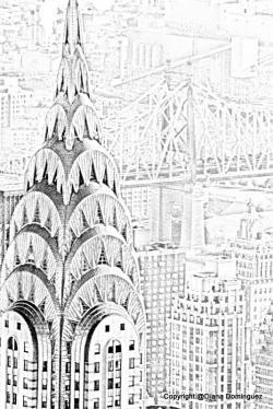 Drawn eye new york