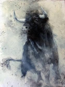 Drawn bull