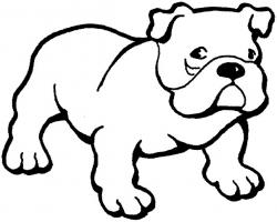 English Bulldog clipart drawing