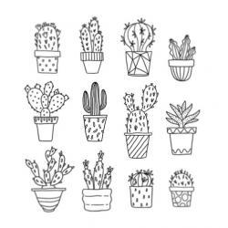 Drawn cactus