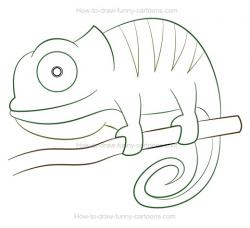 Drawn chameleon