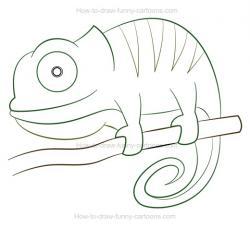 Drawn cameleon