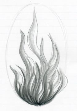 Drawn seaweed realistic
