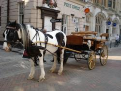 Drawn carriage