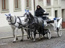 Drawn carriage