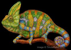 Drawn chameleon