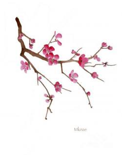 Drawn sakura blossom sakura tree