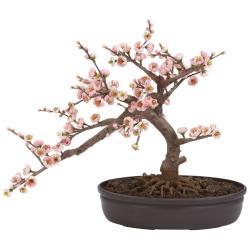 Drawn ume blossom bonsai tree
