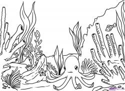 Drawn coral reef