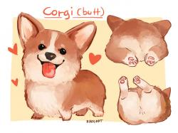Drawn corgi