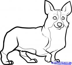 Corgi  clipart drawing