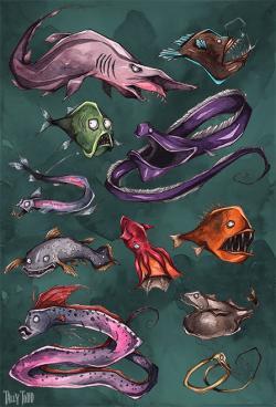 Drawn sea life deep sea creature