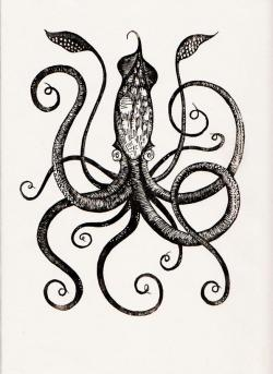 Drawn squid colossal squid