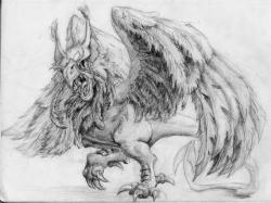Drawn griffon mythical beast
