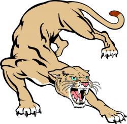 Cougar clipart sketch