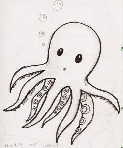 Drawn squid baby squid
