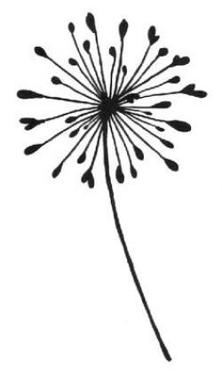 Dandelion clipart silhouette