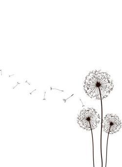 Dandelion clipart elegant flower