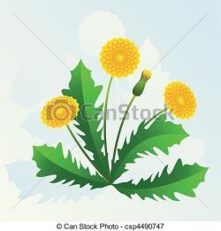 Dandelion clipart yellow dandelion
