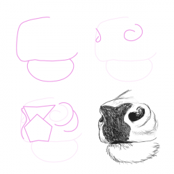 Drawn dear nose