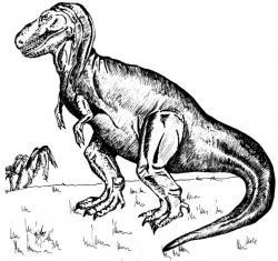 Drawn tyrannosaurus rex original