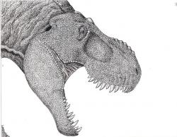 Drawn tyrannosaurus rex pen and ink