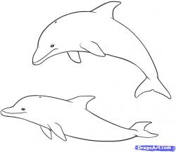 Drawn pice dolphin