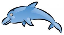 Drawn dolphines mammal